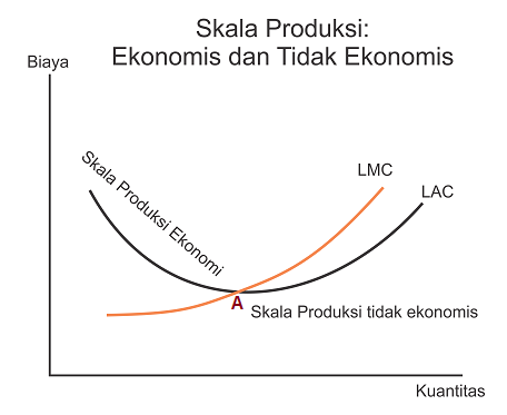 Skala Produksi Ekonomis dan Tidak Ekonomis